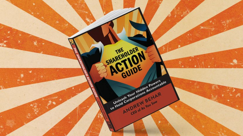 Book recommendation: The Shareholder ActionGuide