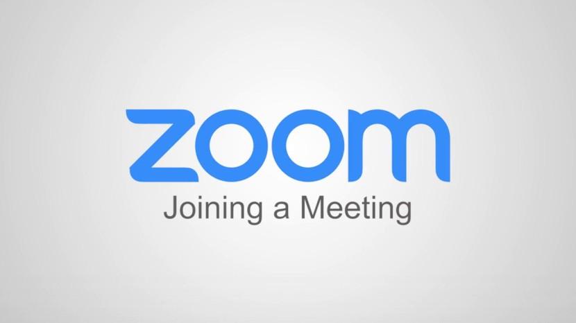 Tips for using Zoom in SGI'swebinars