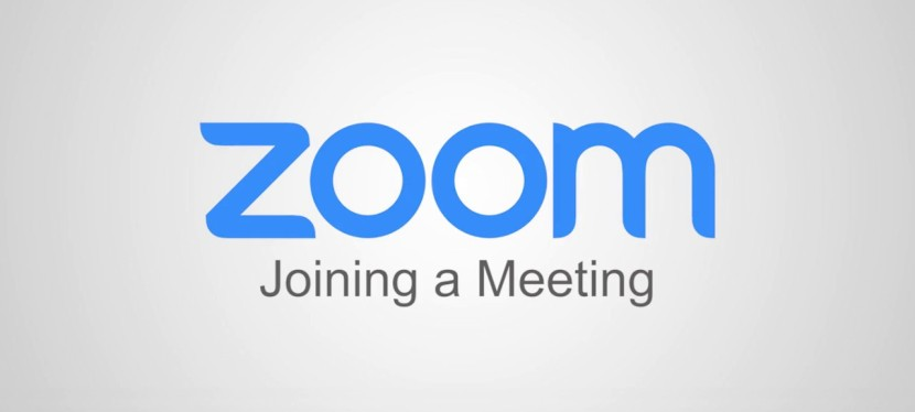 Tips for using Zoom in SGI's webinars