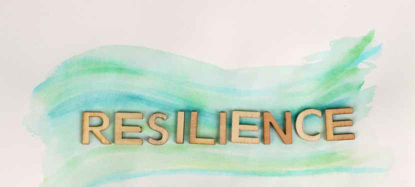 Resilience: Building A Just and Equitable Economy for All – A VirtualConference